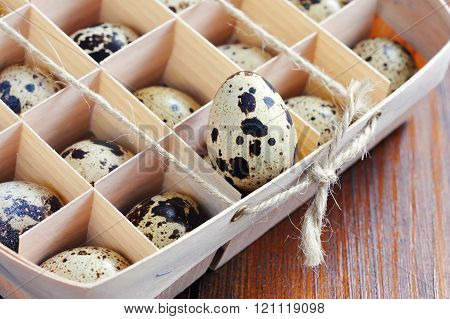 Quail egg in wooden box packaging tray