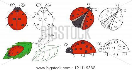 Set of hand drawn ladybugs.