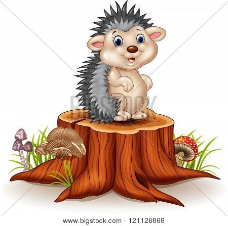 Adorable baby hedgehog sitting on tree stump