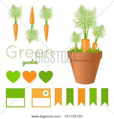 Set Of Garden Pots With Fresh Carrots And Greens.carrot And Green Grass In Pots,printable Files. Vec
