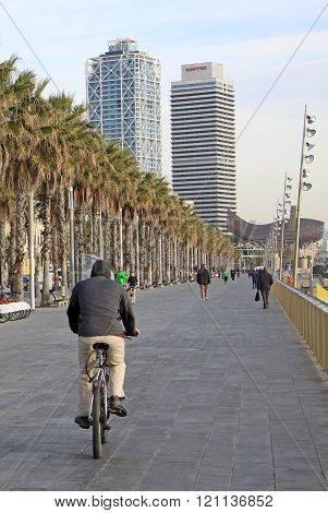 Barcelona, Catalonia, Spain - December 13, 2011: Promenade Or Embankment Along Passeig Maritim Barce