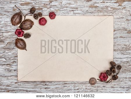 Wooden Background With Old Paper And Dry Plants