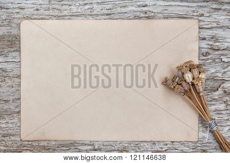 Rude Wooden Background With Paper And Dry Plants