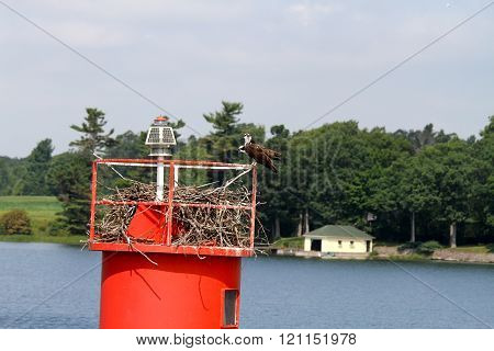perch for birds on the St. Lawrence in Kingston (Ontario) , Canada
