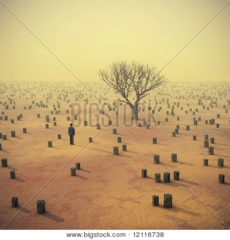 lonely tree in the middle of stumps