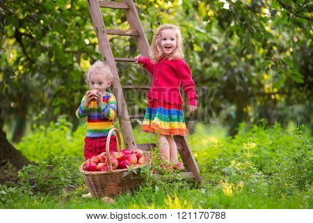 Kids Picking Apples In Fruit Garden