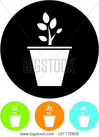 Flowerpot with plant - Vector icon isolated.