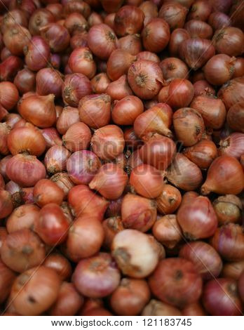 Onion-Pile Of onions / Stack Of onions