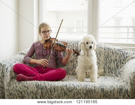 Girl Vith Volin And Her Dog