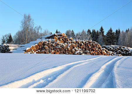 Harvesting Timber Logs In Winter