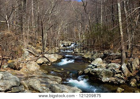 Flowing water on a Virginia mountain stream highlighted by rocks and trees.