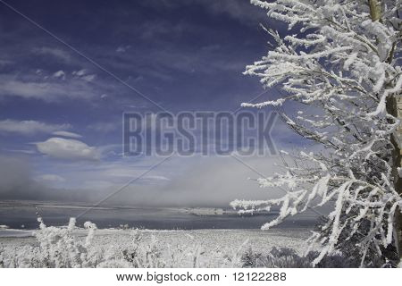 A lake surrounded by snow covered mountains and trees