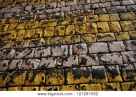 Dark pavement of large cobblestones. Painted yellow and white color.