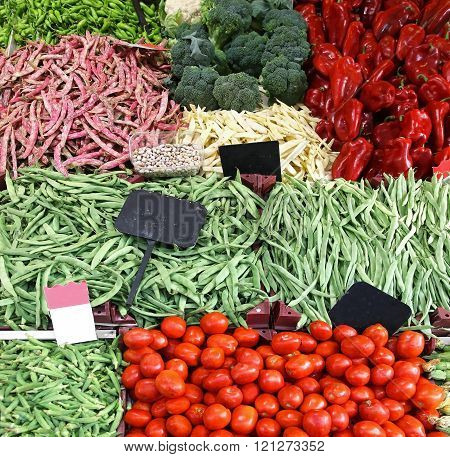 Large Vegetable Pile