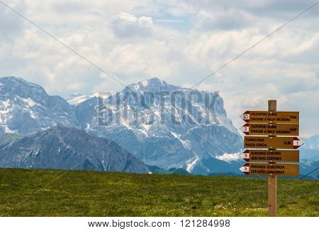 Alpine meadow with wooden signage.