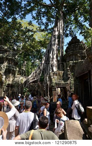 Siem Reap, Cambodia - December 3, 2015: Tourists Visit Ta Prohm Temple At Angkor