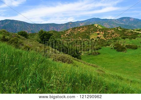 Lush green grasslands taken at the San Gabriel Mountain Foothills in Claremont, CA