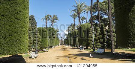Genoves Park, sunny day, Cadiz, Andalusia, Spain