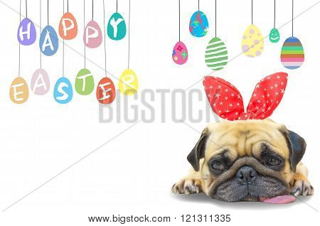Happy Easter. Dog Pug Wearing Rabbit Bunny Ears Sleep Rest Near Pastel Colorful Of Eggs With Copy Sp