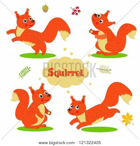 Funny Cartoon Squirrel Characters Set. Welcome Baby Vector Illustration.