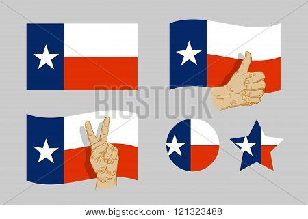 Texas flag icons set. vector illustration