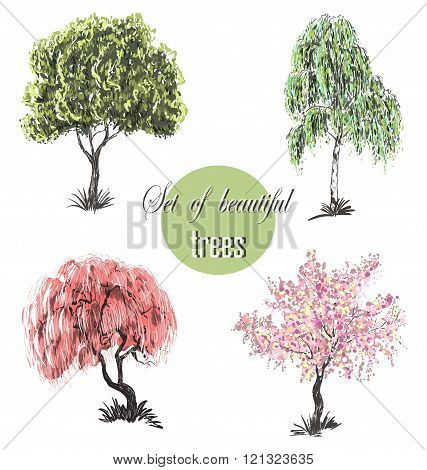 Beautiful Set Of Silhouette Amazing Trees For Design. Vector Illustration. Cherry Blossoms, Cherry T