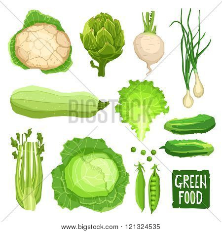 Set of fresh green vegetables, healthy and organic food collection with cauliflower, cabbage, artichoke, onions, garlic, salad, squash, cucumber and celery