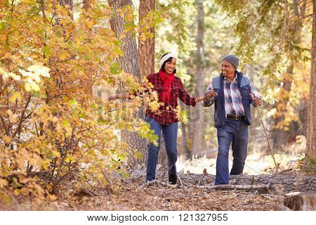 Senior African American Couple Walking Through Fall Woodland