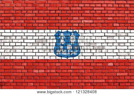 flag of Asuncion painted on brick wall