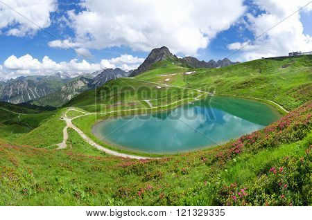 Lake Riezler Alpsee with alpine roses