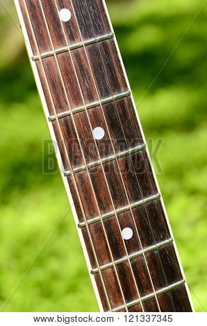 Guitar fretboard with strings over green summer grass background