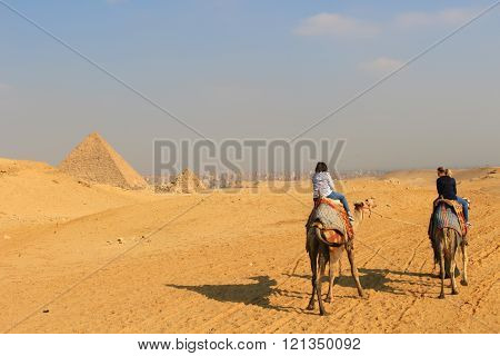 Riding Camels At The Pyramids Of Giza
