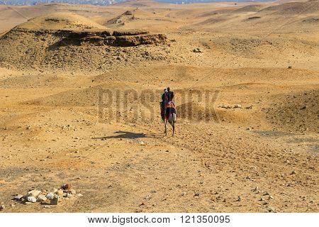 Two Men On Horseback In The Desert Of Egypt