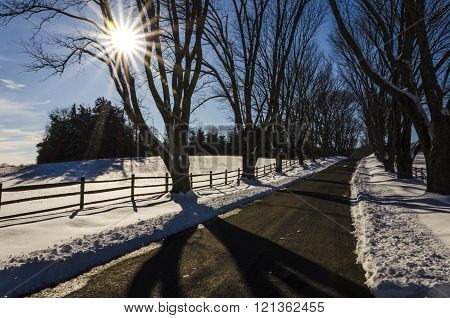 Curvy Road in Winter with Sunlight