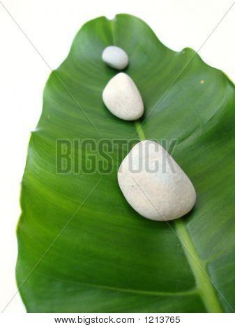 White Pebbles On Leaf - Natural Spa