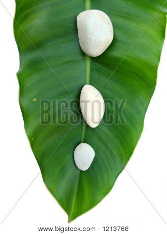 White Pebbles On Green Leaf - Natural Spa