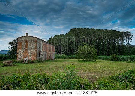 Padule Di Fucecchio, Natural Park, Tuscany