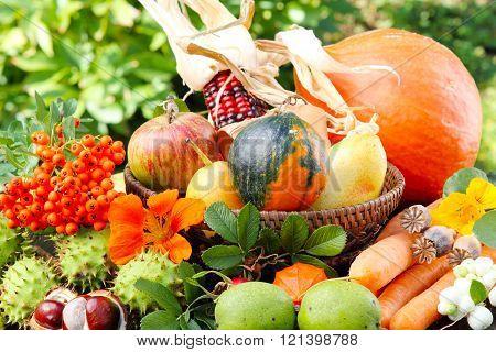 Thanksgiving autumn fruits
