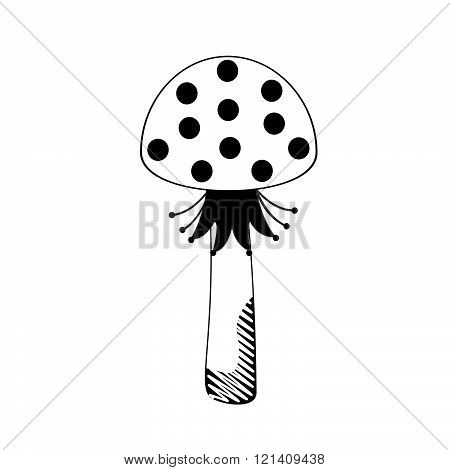 mushroom fly agaric graphic drawing black-and-white