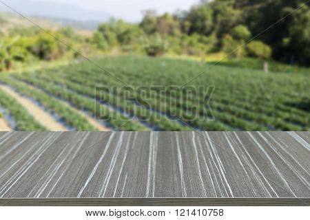 Empty Wooden Table With Stawberry Farm Blur Background