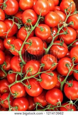 Red natural tomatoes in the basketful. Fresh organic tomatoes background texture. close-up. Selective focus.