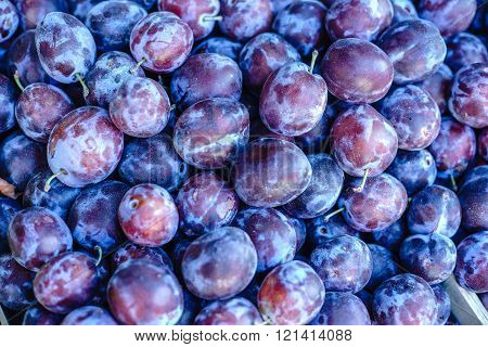 Blue plum fruits. Ripe Plums Background close-up. Selective focus.