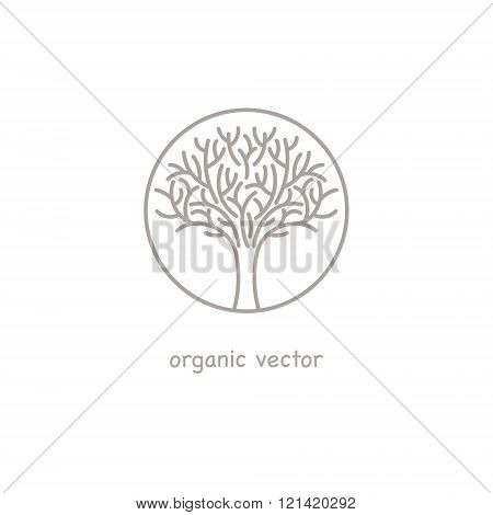 Illustration tree symbol style organic design. Organic vector. Modern illustration for organic packaging for natural organic products organic shops organic cosmetics organic clothing.