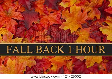Fall Back Time Change Message Fall Leaves Background and text Fall Back 1 Hour