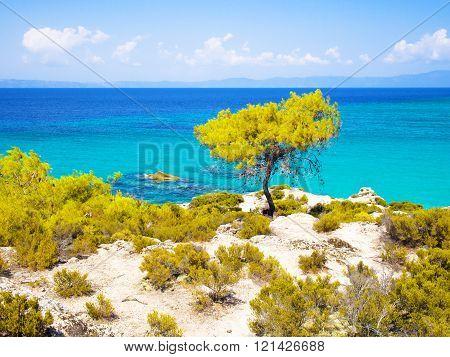 Beautiful beach and seascape on Halkidiki, Sithonia, Greece