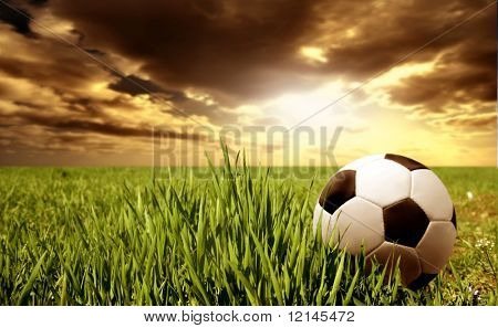a soccer ball in a grass field