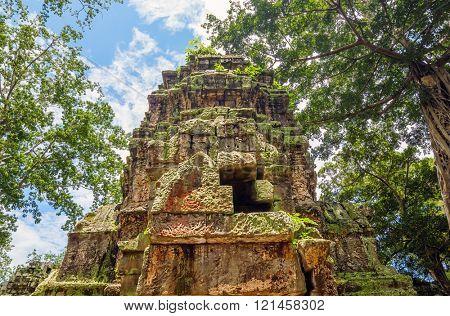 Ta Prohm temple ruin at Angkor, Siem Reap Province, Cambodia.