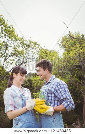Young couple holding a sapling in garden