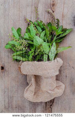 Branch Of Fresh Red Holy Basil And Holy Basil Flower From The Garden In Hemp Sack Bag On Wooden Back