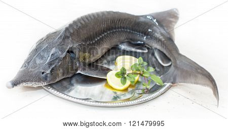 Sturgeon (disambiguation) on a plate with lemon - letterbox look image